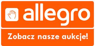 allegro-altisidora-firany-orzesze